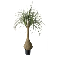Artificial plant, 5' ponytail palm