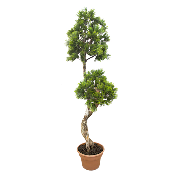 Arbre artificiel pin 6 39 d cors v ronneau for Arbre artificiel
