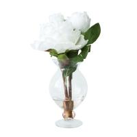 Pivoines blanches dans vase de vitre 12''