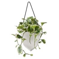 Plante artificielle de jade dans pot suspendu