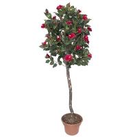 Plante artificielle, hibiscus à fleurs rouges 6'