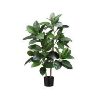Plante artificielle, caoutchouc 3'