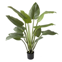 Plante artifielle, curcuma 4'
