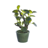 Artificial 12'' jade plant
