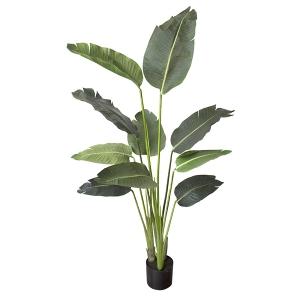 Plante Artificielle, Oiseau du paradis 5'