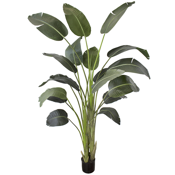 artificial plant 7 39 traveller palm veronneau plants. Black Bedroom Furniture Sets. Home Design Ideas