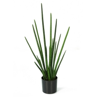 Plante artificielle, sansevière verte 3'