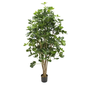 Plante artificielle, shefflera exotique 6'