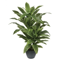 Potted natural touch yucca plant 42''