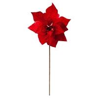 Poinsettia rouge sur tige