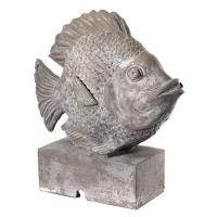 Resin angel fish spitter 13x15,5''