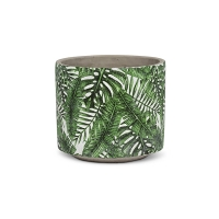 Pot tropical 5,5''