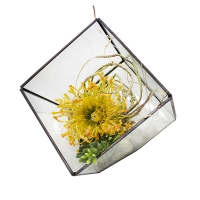 Yellow protea in geometric glass vase