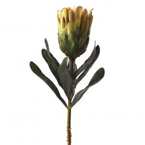 Fleur artificielle prot a verte 26po d cors v ronneau for Soldes plantes vertes