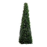 Boxwood pyramid int./ext. 4 feet