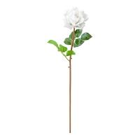 Rose blanche ouverte sur tige 26''