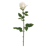 Cream French Rose Stem, 28''