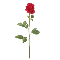 Red French Rose Stem, 28''