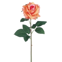 Peach Rose Stem, 20.5''