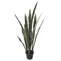Artificial sanseveria, 44''
