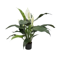 Artificial plant, 25'' Spathiphyllum