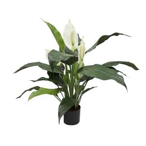 Plante artificielle, spathyphillum 25''
