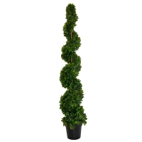 Orange leaf spiral tree iint./ext. 5 feet, 2 years warranty