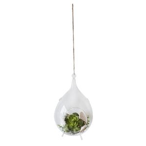 Suspension plantes grasses et bois 8 x 14''