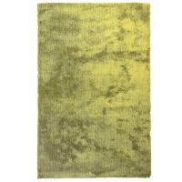 Tapis shag vert 5x7'