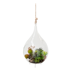 Terrarium de plantes grasses en verre