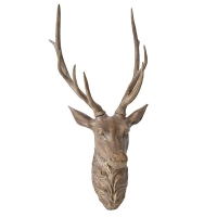 Brown Deer Head, 36''