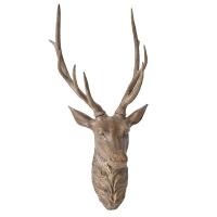 Tête de chevreuil brune, 36''