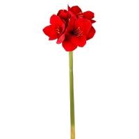 Tige d'amarylis en velour rouge 32''