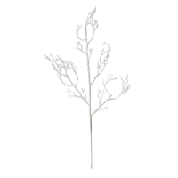 31'' Twig branch