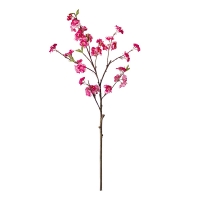 Tige de cerisé en fleur fushia 36''