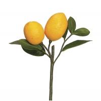Tige de citron 8,5''