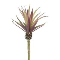 Tige de feuilles d'ananas, 10''