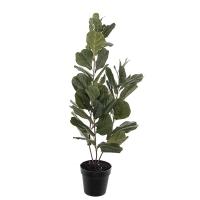 Ficus lyrata artificiel, 43''