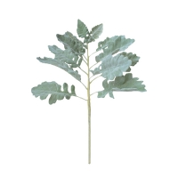 17'' Grey-green fern stem