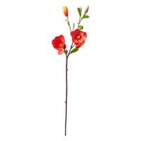 Tige de magnolia 33''