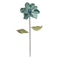 Tige de magnolia aqua