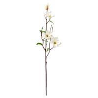 Tige de magnolia blanc 28''