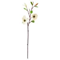 Tige de magnolia blanc 33''
