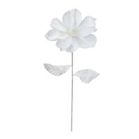 Tige de magnolia blanc