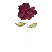 Tige de magnolia bourgogne