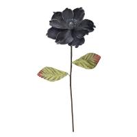 Tige de magnolia charbon