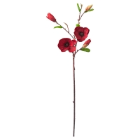Tige de magnolia rouge 33''