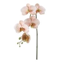 Tige d'orchidées phalaenopsis rose pâle, 26''
