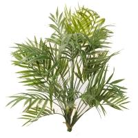 Tige de petite feuille de palmier