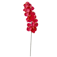 Red phalaenopsis spray 44,5''